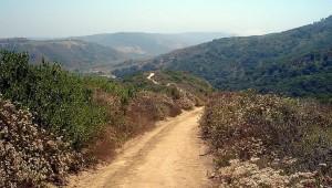 Aliso and Wood Canyon Laguna Beach Day Hike