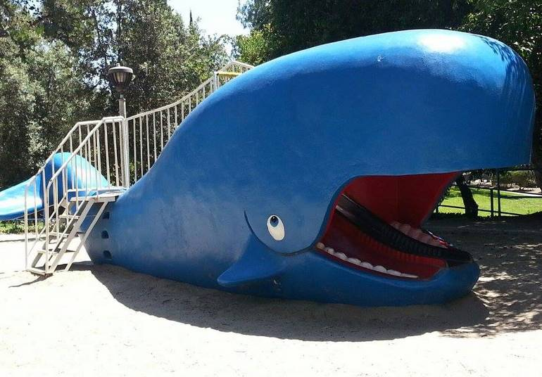 Wally Whale Atlantis Play Center Garden