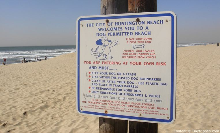 Huntington Beach Dog Beach Rules