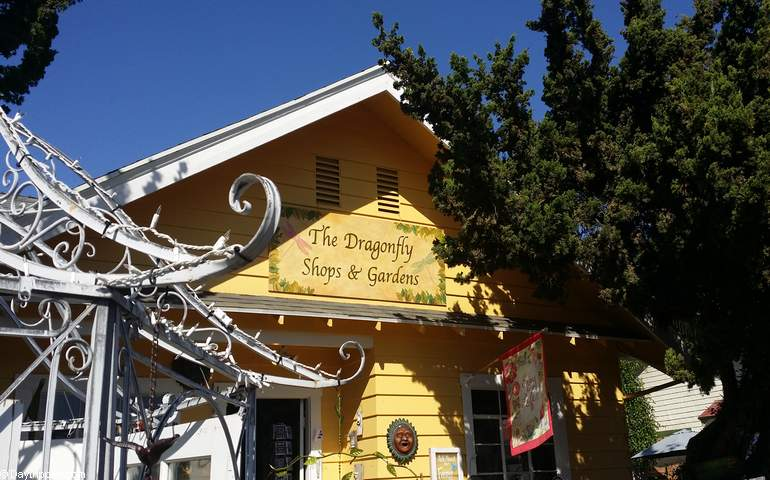 Dragonfly Shops Old Towne Orange