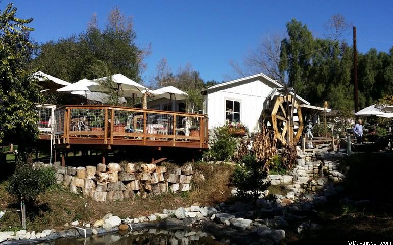 Myrtle Creek Botanical Gardens Cafe Bloom