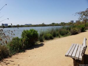 San Joaquin Wildlife Sanctuary Day Trip