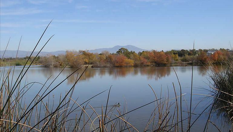 San Joaquin Wildlife Sanctuary Irvine Day Trip