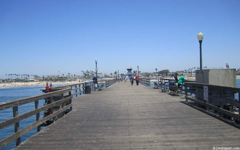 Seal beach day trip activities things to do and see for Seal beach fishing