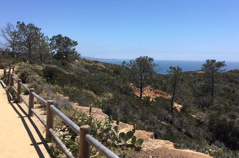 Torrey Pines State Reserve San Diego