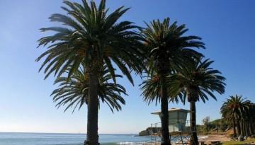 Refugio State Beach Camping Santa Barbara