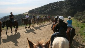 Sunset Ranch Hollywood Horseback Trail Rides