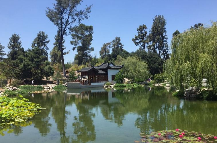 Huntington Library & Gardens