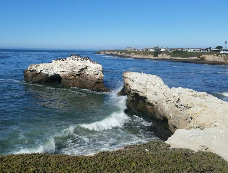 Natural Bridges State Beach Santa Cruz California