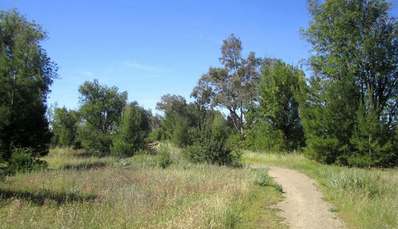 O'Neill Regional Regional Park Mesa Trail