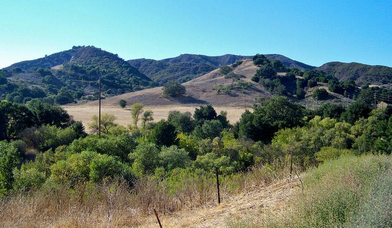 Santa Monica Mountains Wineries