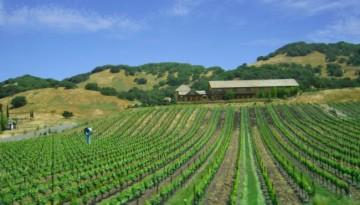 Top Ten Northern California Attractions