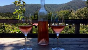 Carmel Valley Wine Tasting Day Trip