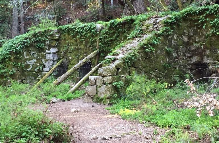 Henry Cowell Redwoods State Park Lime Kilns