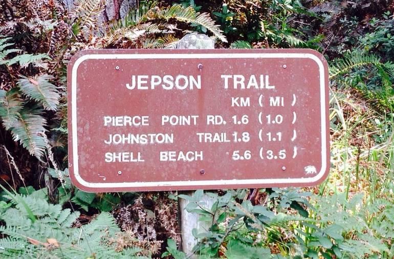 Jepson Trail Tomales Bay SP