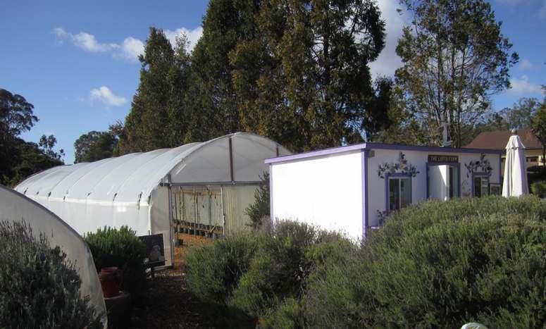 Luffa Farm Nipomo