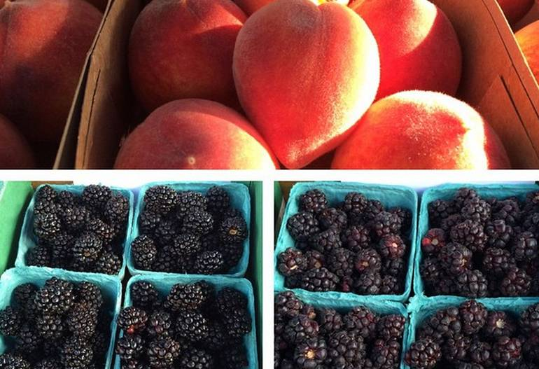 Redlands Farmers Market