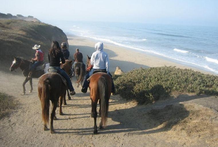 SeaHorse Ranch Horseback Beach Rides