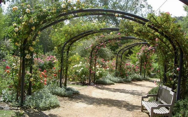 Descanso Gardens La Canada Flintridge