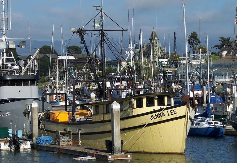 Humboldt Bay California North Coast