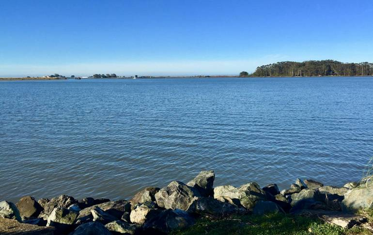 Humboldt Bay Eureka California