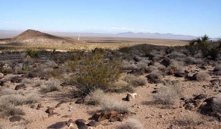 Lanfair Valley Mojave National Preserve