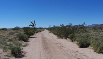 Old Mojave Road 4-Wheel Drive Adventure Trip