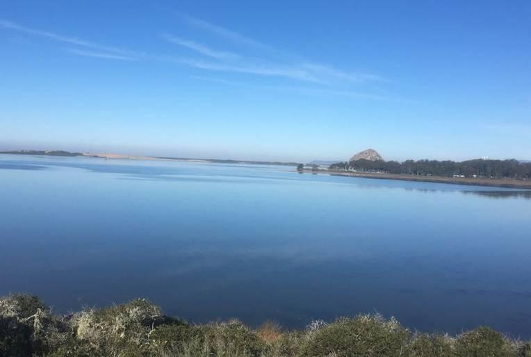 Morro Bay Estuary