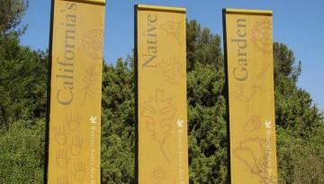 Rancho Santa Ana Botanical Garden Day Trip