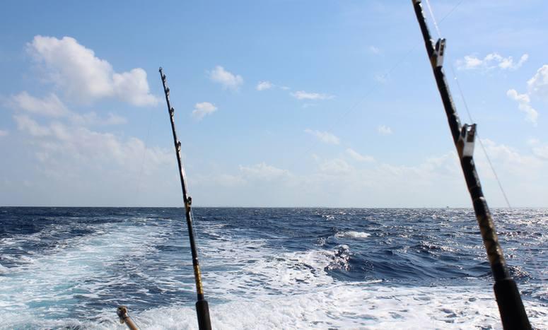 Southern california ocean fishing day trips discounts for Deep sea fishing dana point