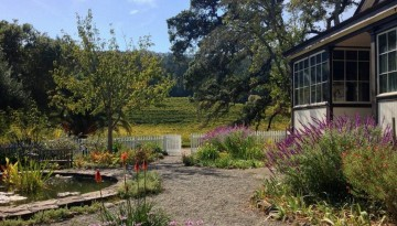 Glen Ellen Sonoma County Day Trip