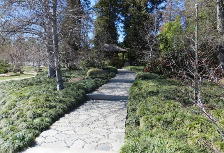 Japanese Garden Van Nuys Dry Garden