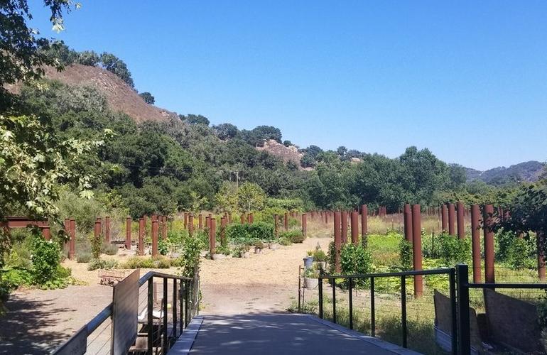 Sycamore Springs Resort Garden