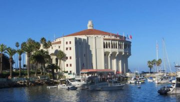 Catalina Island Day Trip Fun Things To Do