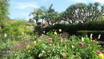 Discover Southern California Botanical Gardens