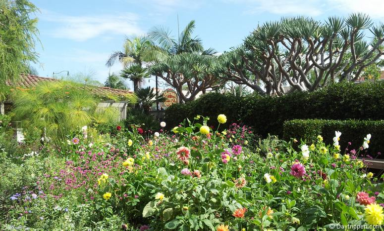 25 Beautiful Southern California Botanical Gardens