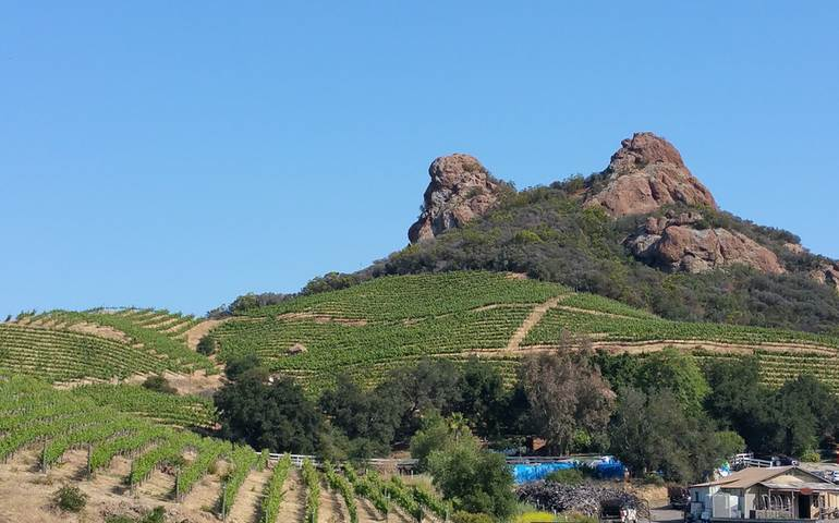Santa Monica Mountain Wineries