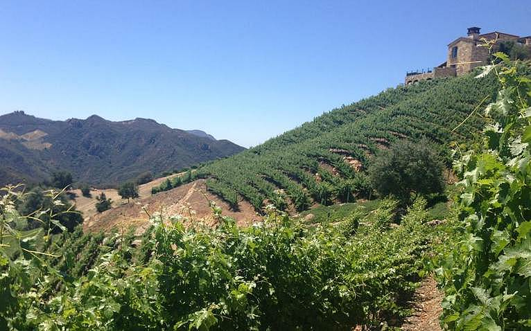 Santa Monica Mountains Wine Tasting