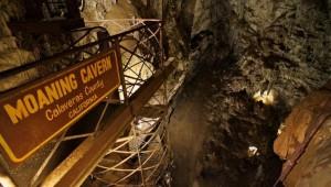 Black Chasm Cavern Adventure Park Day Trip