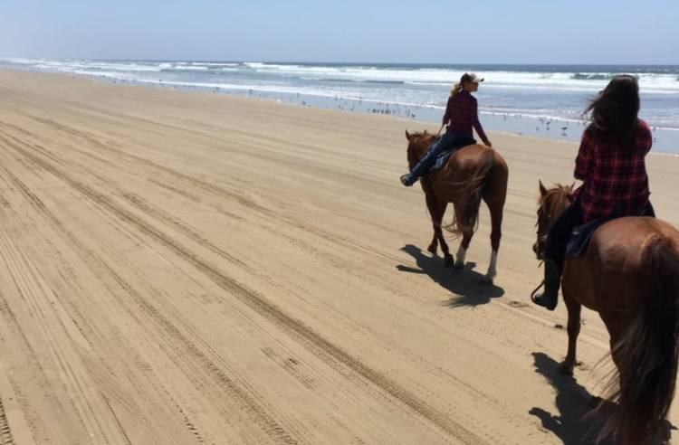 Pismo Beach Horseback Riding