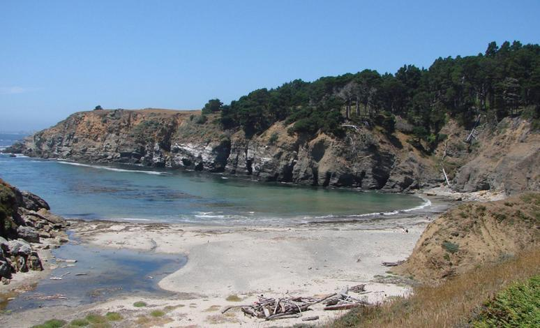 Day Trippers Guide to Salt Point State Park