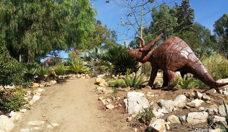 Cycad Garden Alta Vista Botanical Gardens