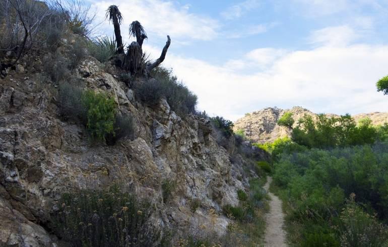 Yucca Ridge Trail