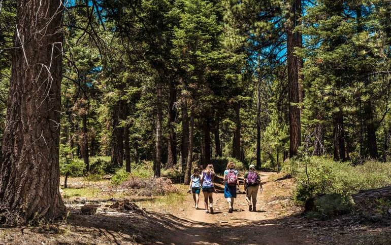 Big Bear San Bernardino Mountains Day Trip Things to Do