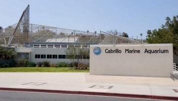 Day Trip Cabrillo Marine Aquarium San Pedro
