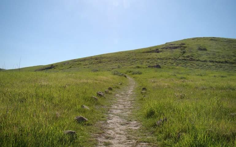 Quail Hill Loop Trail