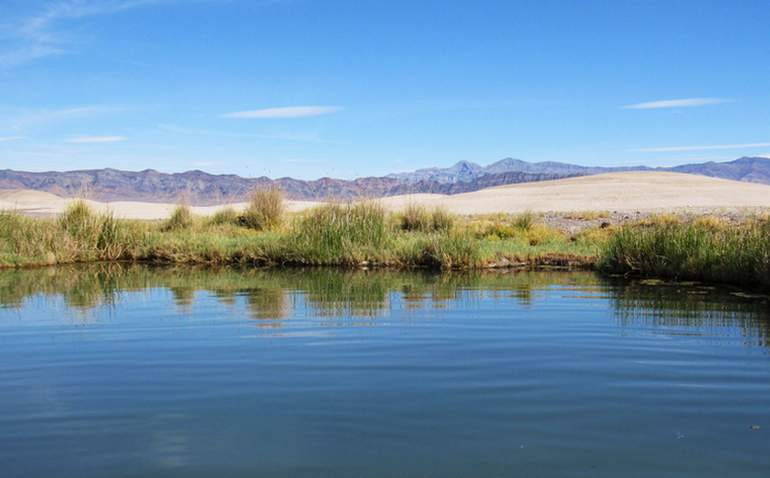 Tecopa Hot Springs