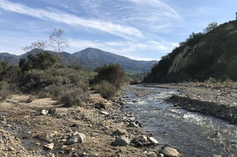 Trabuco Creek in the Spring