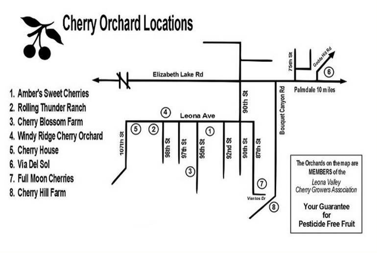 Leona Valley Cherry Orchard Map