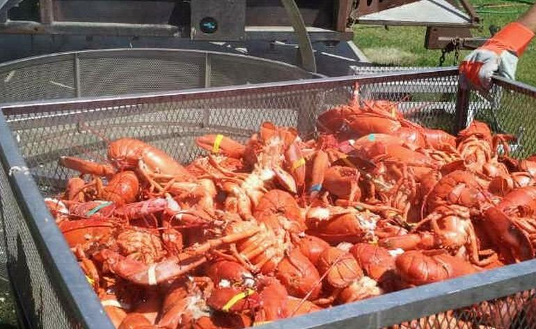 Long Beach Lobster Festival